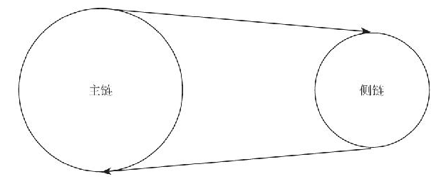 5.2 侧链技术