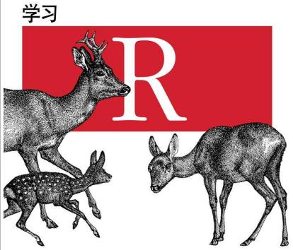 学习R (图灵程序设计丛书) - 电子书下载(高清版PDF格式+EPUB格式)